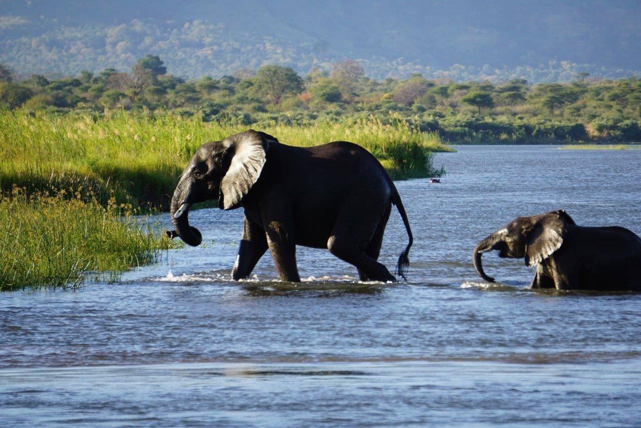 Miglior sito di incontri Zimbabwe