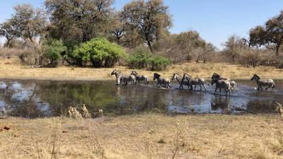 datazione uomo bianco in Botswana incontri per le signore